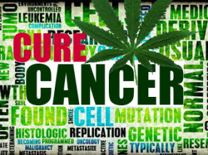 cure-cancer