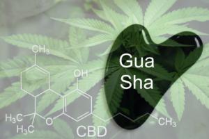 Cannabis Gua Sha